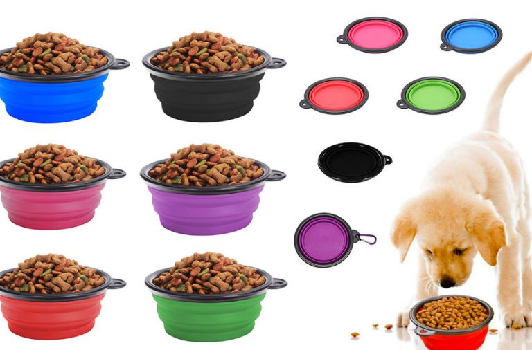 Are Organic Pet Foods Perfect For Your Pets?